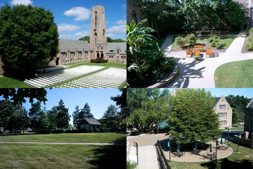 Outdoor venues for events and rentals