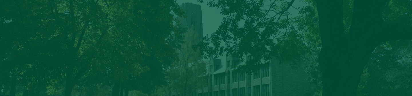 Concordia Seminary Newsroom and Press Releases